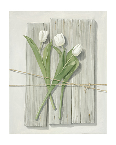 white_tulips_mot